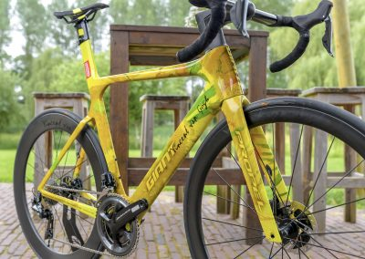 Vincent van Gogh Bike